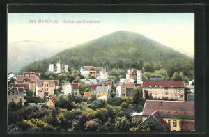 AK Bad Harzburg, Villen am Burgberge