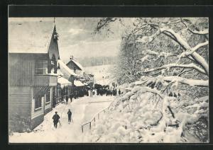 AK Bad Harzburg, Molkenhaus im Winter