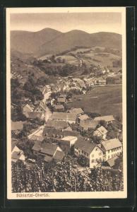 AK Bühlertal-Obertal, Gesamtansicht aus der Vogelschau