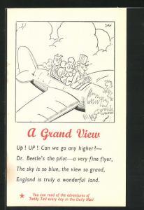 Künstler-AK A Grand View, Teddy, Maus und Schwein im Flieger