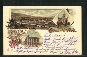 Lithographie Olten, Postamt, Wartburg Säli