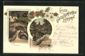 Lithographie Luzern, Gletschertopf im Gletschergarten, Edelweiss