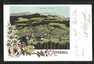 Lithographie Appenzell, Ortsansicht aus der Vogelschau mit Säntis, Edelweiss