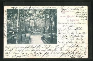 AK Annweiler, Gasthaus zur Hainlust im Zellerthal
