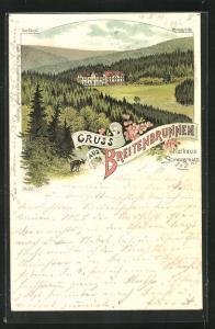 Lithographie Sasbachwalden, Hotel-Kurhaus Breitenbrunnen mit Hornisgrinde
