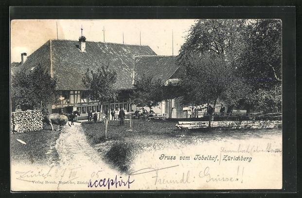 AK Zürich, Tobelhof, Zürichberg 0