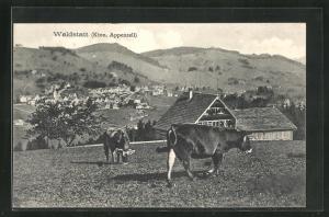 AK Waldstatt, Ortsansicht von Wiese mit Kühen auf Häuser, Kirche und Landschaft