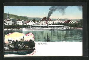 AK Wädenswil, Dampfer auf dem Zürichsee, Ortspartie