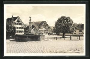 AK Appenzell, Platzanlage mit Brunnen und Häusern