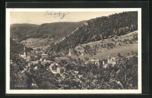 AK Waldenburg, Panorama