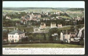 AK Schaffhausen, Panorama, Fäsenstaub