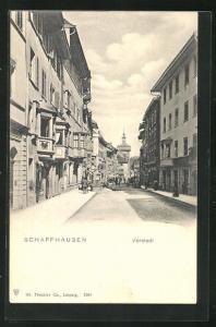 AK Schaffhausen, Teilansicht mit Vorstadt