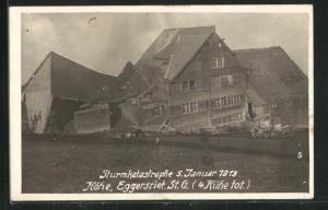 AK Eggersriet, Sturmkatastrophe 5. Januar 1919, Zerstörter Stall (4 Kühe tot)