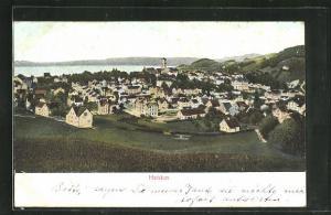 Relief-AK Heiden, Panoramablick auf die Ortschaft