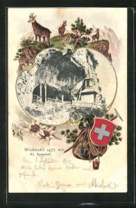 Passepartout-Lithographie Wildkirchli, Kapelle an der Felswand, Gemsen und Edelweiss, Wappen