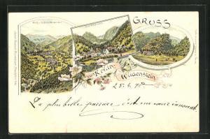 Lithographie Krütz-Wildenstein, Schloss Wildenstein, Dorf, Ortsansicht vom Schloss aus gesehen