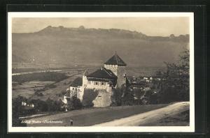 AK Vaduz, Ortsansicht mit Schloss