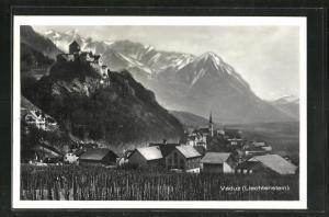 AK Vaduz, Teilansicht mit Bergpanorama