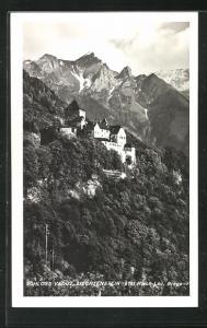 AK Vaduz, Schloss mit Wald und Gebirge aus der Vogelschau