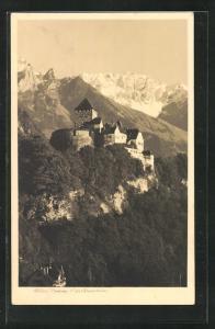 AK Vaduz, Schloss mit Gebirgspanorama