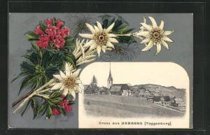 Passepartout-Lithographie Hemberg, Ortsansicht und ein Strauss Alpenblumen
