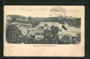 Relief-AK Schaffhausen, Rheinfall