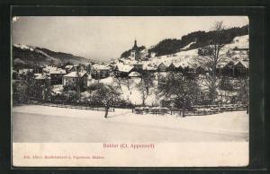 Relief-AK Bühler / Appenzell, Gesamtansicht