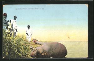 AK Hippopotamus on the White Nile, Jagd auf eine Nilpferd