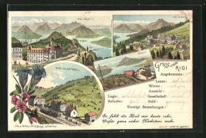 Lithographie Rigi, Totalansicht, Rigi-Klösterli, Rigi-Kaltbad