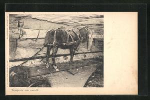 AK Pferdezug im Simplontunnel, Trasporto con cavalli