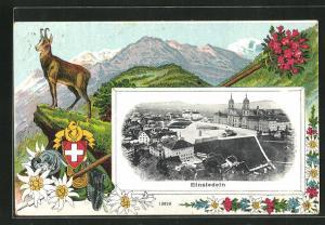 AK Einsiedeln, Gesamtansicht, Wildziege in den Bergen