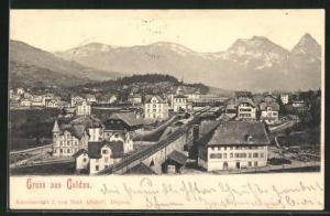 AK Goldau, Panoramablick vom Berg