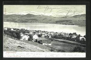 AK Männedorf, Blick auf Ort und See
