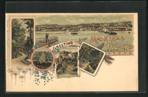 Lithographie Mackinac, MI, Arch Rock from the Water, Panorama und andere Motive