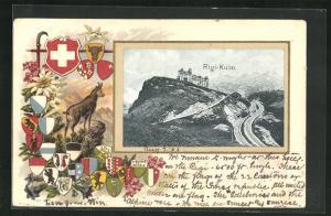 Passepartout-AK Rigi-Kulm, Blick zum Gipfel, Wappen