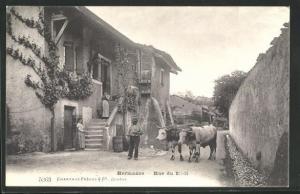 AK Hermance, Rue du Midi, Strassenpartie