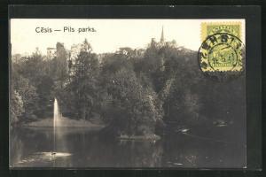 AK Cesis, Pils parks