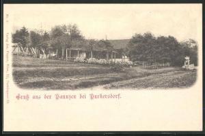 AK Purkersdorf, Ansicht vom Gasthaus Paunzen