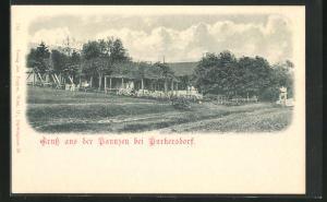 AK Purkersdorf, Ansicht vom Gasthof Paunzen