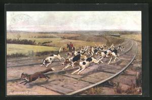 AK Fox Hunting, A Dangerous Finish, Jagd auf einen Fuchs