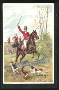 AK Jagd, Fuchs wird von Hunden gestellt, Reiter in roten Röcken