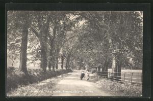 AK Herts, Amwellbury, Walnut Tree Walk