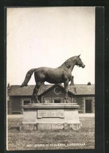 AK Sandringham, Statue of Persimmon