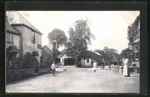 AK Lyonshall, Streetview