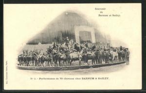 AK Barnum et Bailey, Performance de 70 cheveaux, Pferdedressur, Zirkus