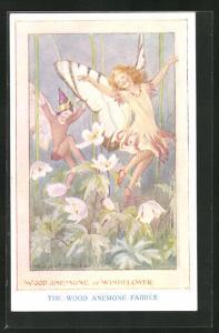 Künstler-AK Margaret W. Tarrant: Schmetterlingsmädchen tanzt zwischen den Blumen, The Wood Anemone Fairies