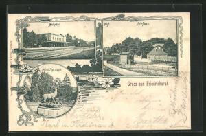 AK Friedrichsruh, Bahnhof, Post und Schloss, Hirschgruppe