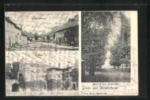 AK Dardesheim, Sührenstrasse, Rittergut, Ausblick vom Butterberge