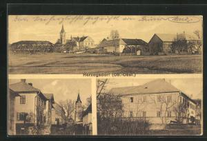 AK Herzogsdorf, Strassenpartie mit Blick zur Kirche, Blick auf den Gasthof
