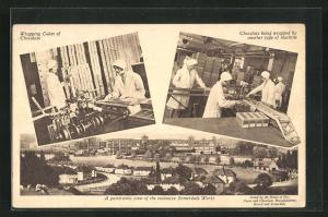 AK Keynsham, A panoramic view of the extensive Somerdale Works, Wrapping Cakes of Chocolate